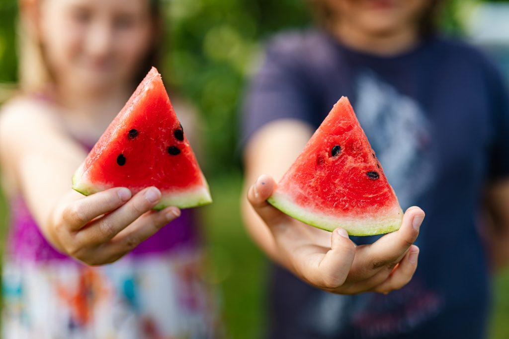 Food Summer International Montessori School